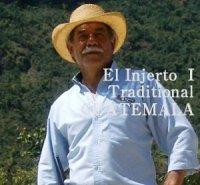 グァテマラ・エルインフェルトI農園トラディッショナル500g