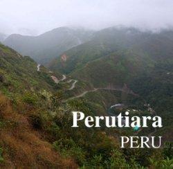 画像1: ペルティアラ250g